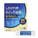 향성파적환 액기스 과립 9포(성인 3일분)