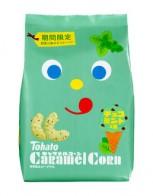 [수량한정] 일본 카라멜땅콩 민트초코맛