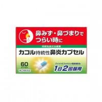 사카모토 한방 카코르 지속성 비염 캡슐 60정